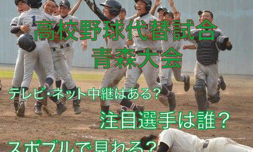 高校野球代替試合の青森大会テレビ・ネット中継動画!スポブルは?