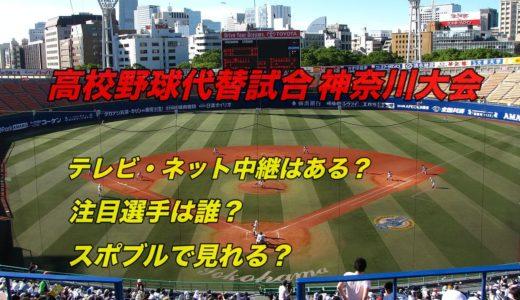 高校野球代替試合の神奈川大会テレビ・ネット中継動画!スポブルは?