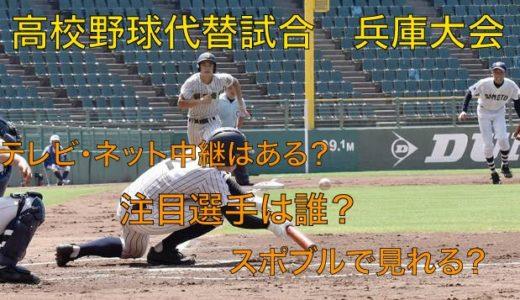 高校野球代替試合の兵庫大会テレビ・ネット中継動画!スポブルは?