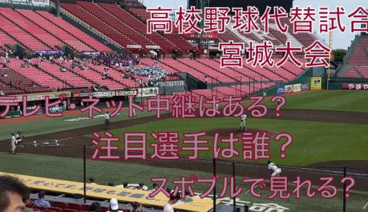 高校野球代替試合の宮城大会テレビ・ネット中継動画!スポブルは?